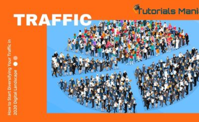 How to start Diversifying Traffic | Digital Marketing Strategy